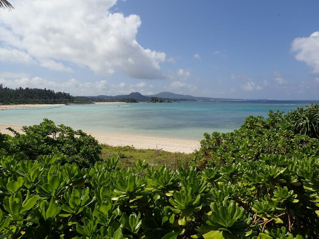 緑の草木から覗けば白い砂浜と海