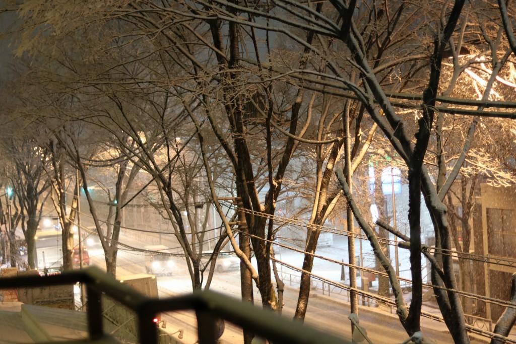 降り積もった東京の雪