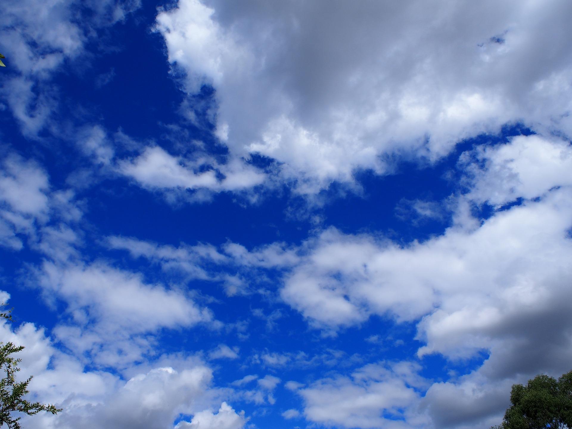 見上げると青の濃い空
