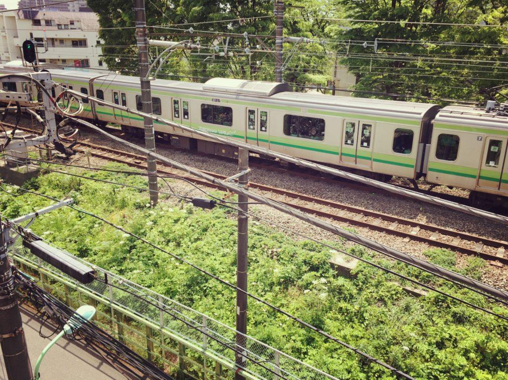 線路の緑と電車の緑がマッチしている