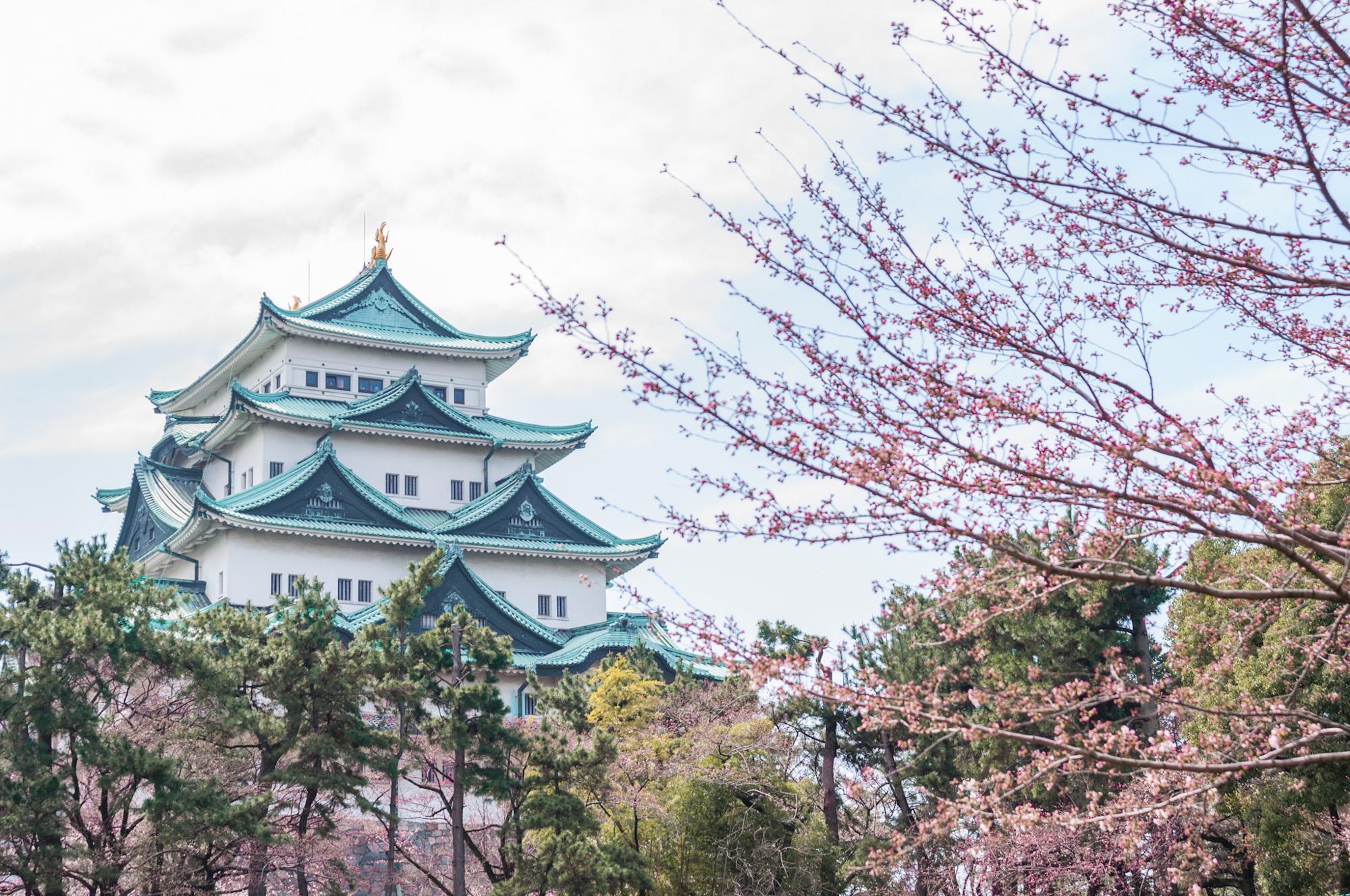 歴史と共にそびえ立つ名古屋城