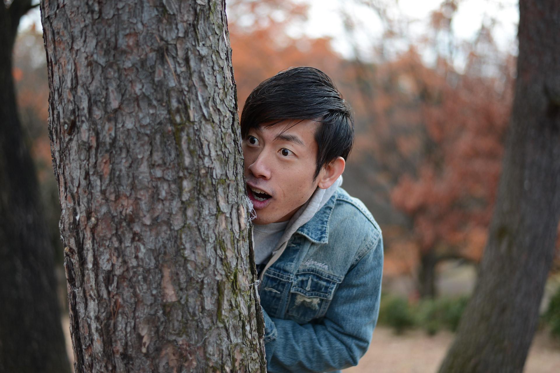 木の陰から見てはいけないものを見てしまった