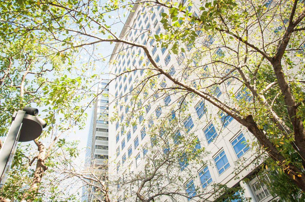 木々の間から顔をだすオフィスビル