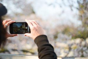 公園の景色をスマホで撮影する