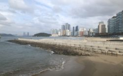 韓国釜山の海とビル